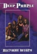Дрибущак Владимир Владмирович - Deep Purple. Несущие шторм