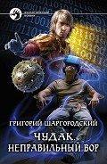 Шаргородский Григорий Константинович - Чудак. Неправильный вор