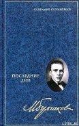 Булгаков Михаил Афанасьевич - Дон Кихот